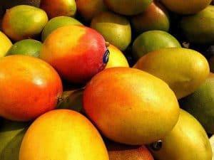 african mango水果
