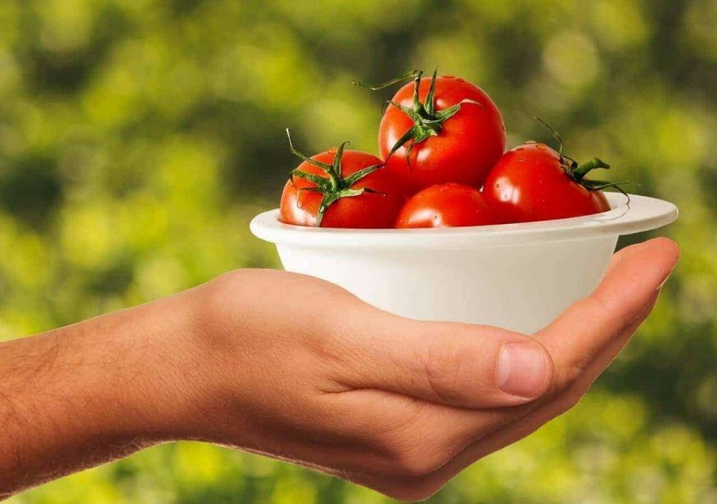tomatoes 1993695 1280 1