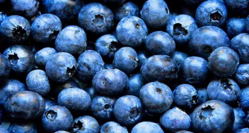blueberries 1593965 1280