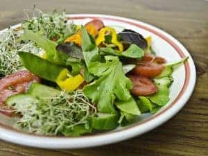盘中蔬菜沙拉