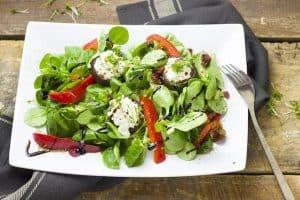蔬菜沙拉在盘子里