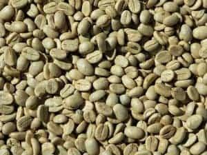 green coffee 927604 640 300x225 1