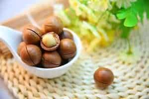 macadamia nuts 1098170 640 300x200 1