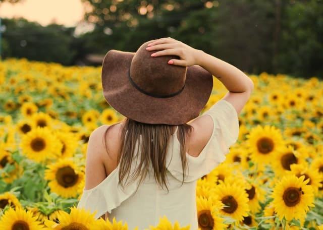 一个女人走过向日葵的田野